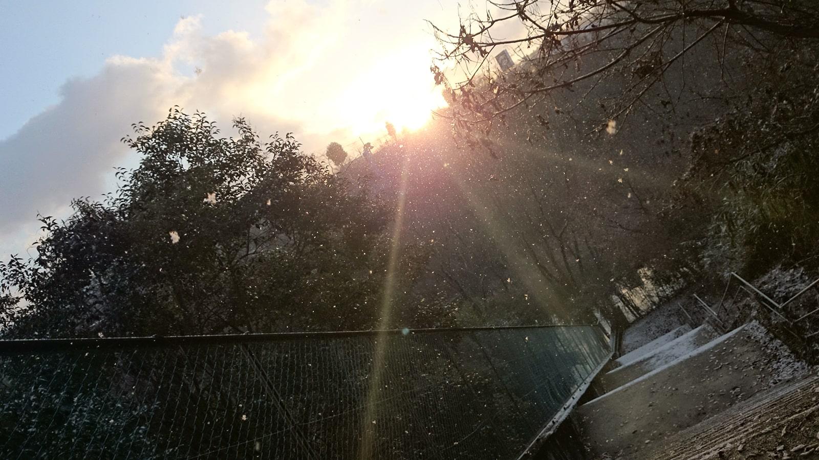 初日の出と雪02